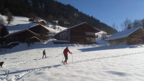 hiver, neige, raquettes, soleil, vacances