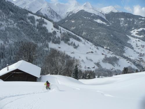 voeux, neige, montagne, ski